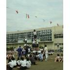 中学の運動会