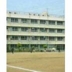 中学の野球部